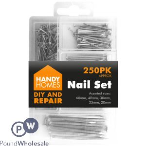 HANDY HOMES 250PK NAIL SET